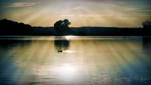 Ducky sunset