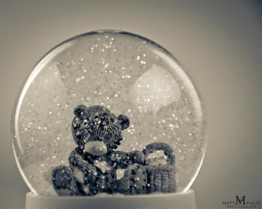 Little mee to you bear :D by MattHalic