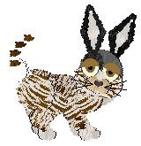 Zebra-bunny-cat of doom by Petz-Central