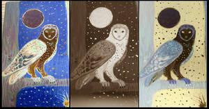 Different Setting Barn Owl Block