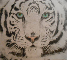 Tiger white by Art1095