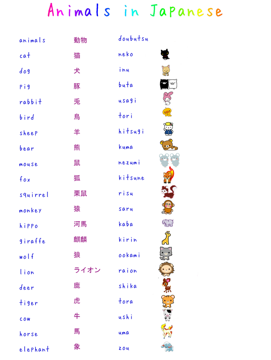 how to learn japanese: