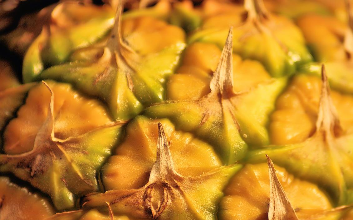 Pineapple by vlargg