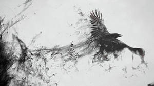 Crow by COOLZONE17500