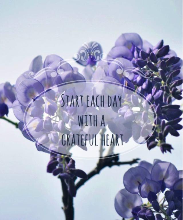 Grateful Heart by bridgetbright