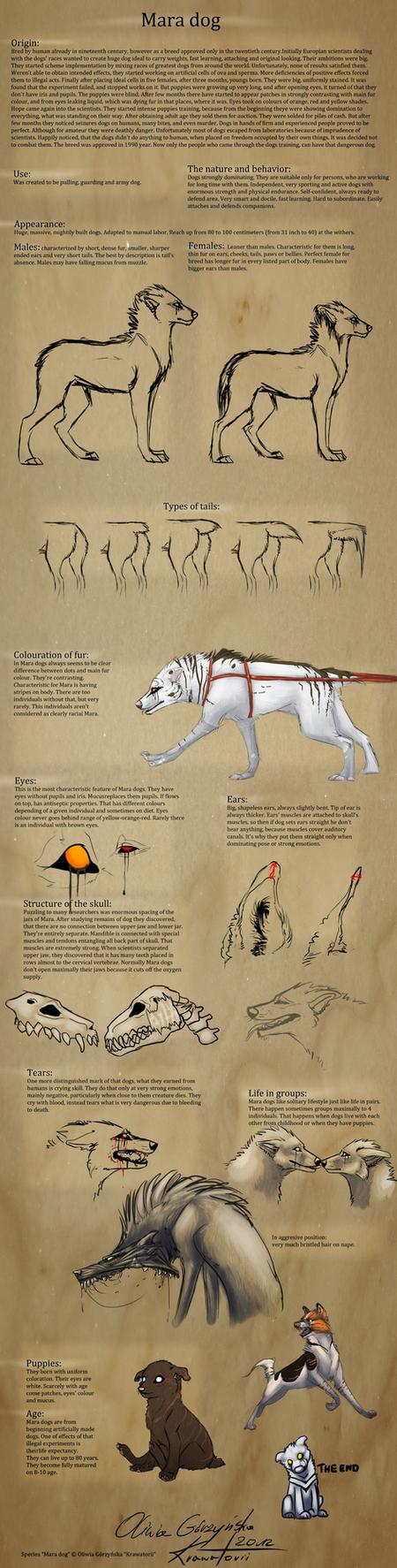 Mara dogs ENG by Krawatorii