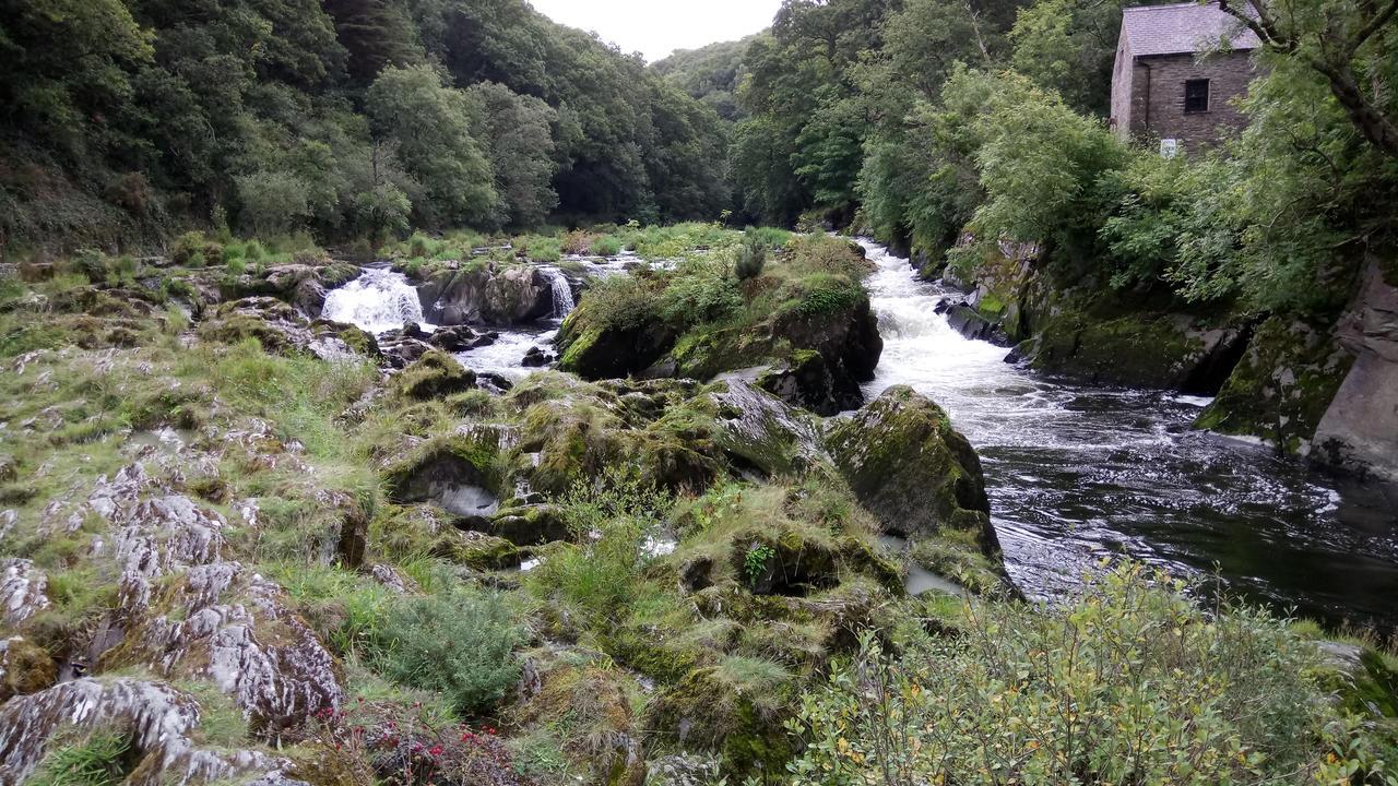 Cenarth Falls - Llansawel, UK #1