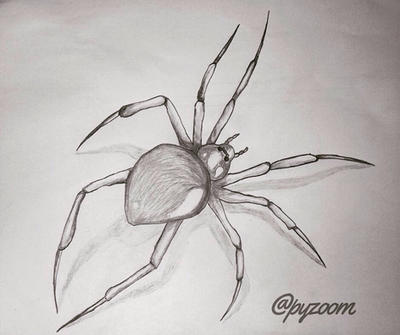 Arachnophobia by Pyzoom
