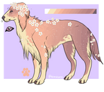 For Sale // Paypal Adopt by corgiass