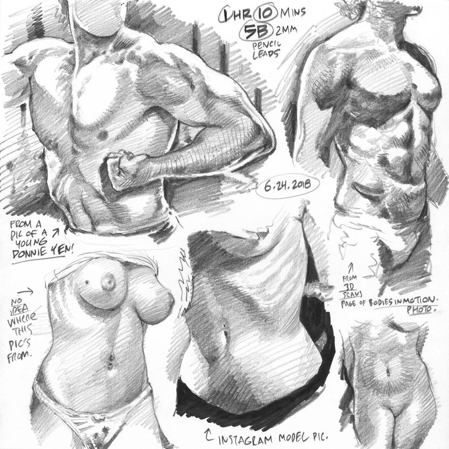 Life drawings from photoreference, 2018-06-24 by AdamWarren