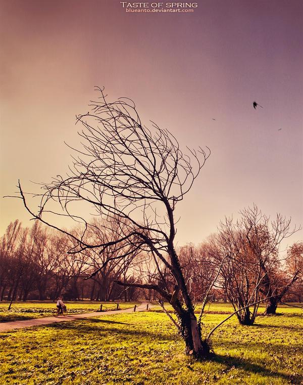 breathe fresh air, fresh air ecoquest, the american life, fresh sun look