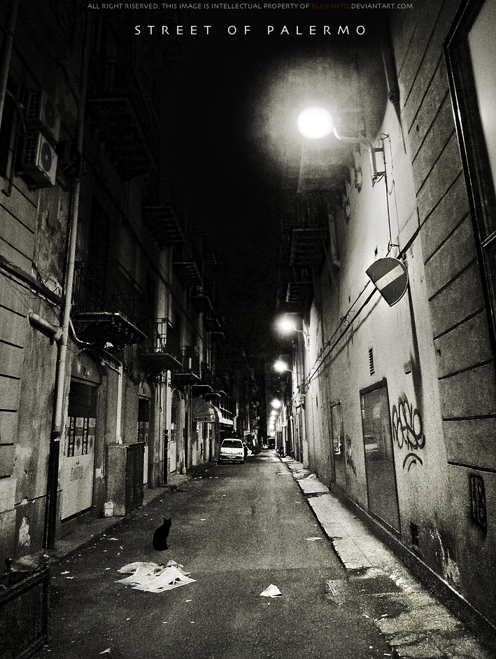 STREET OF PALERMO by blueanto