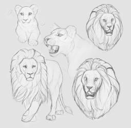 lion sketch by CuteDragonTales