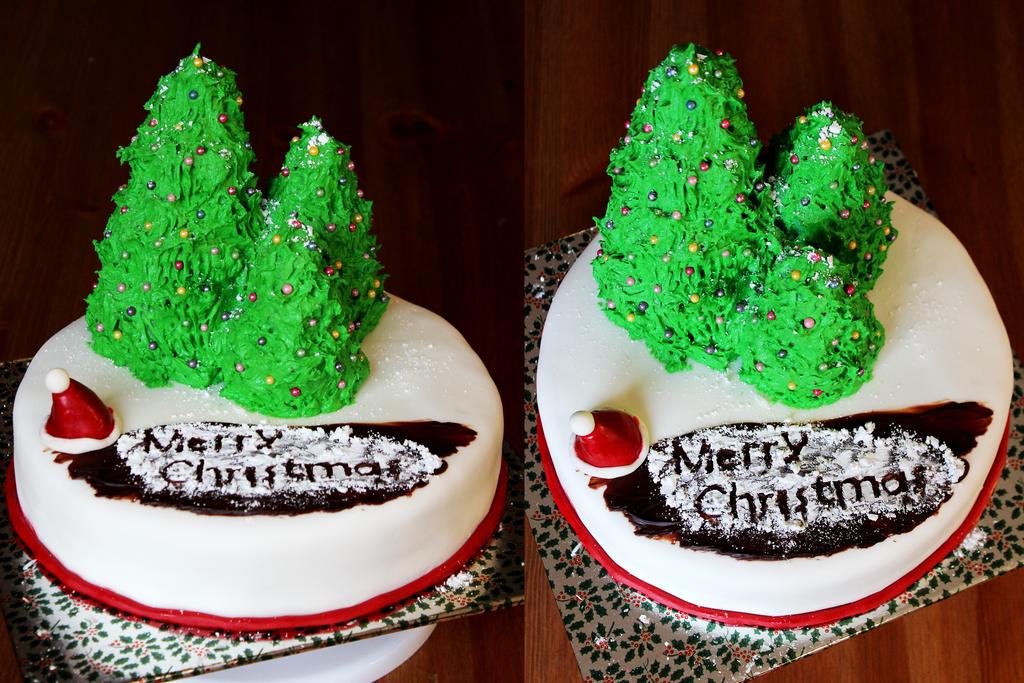 Christmas Cake by BoutABoy