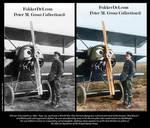 Werner Voss 1917 - in color