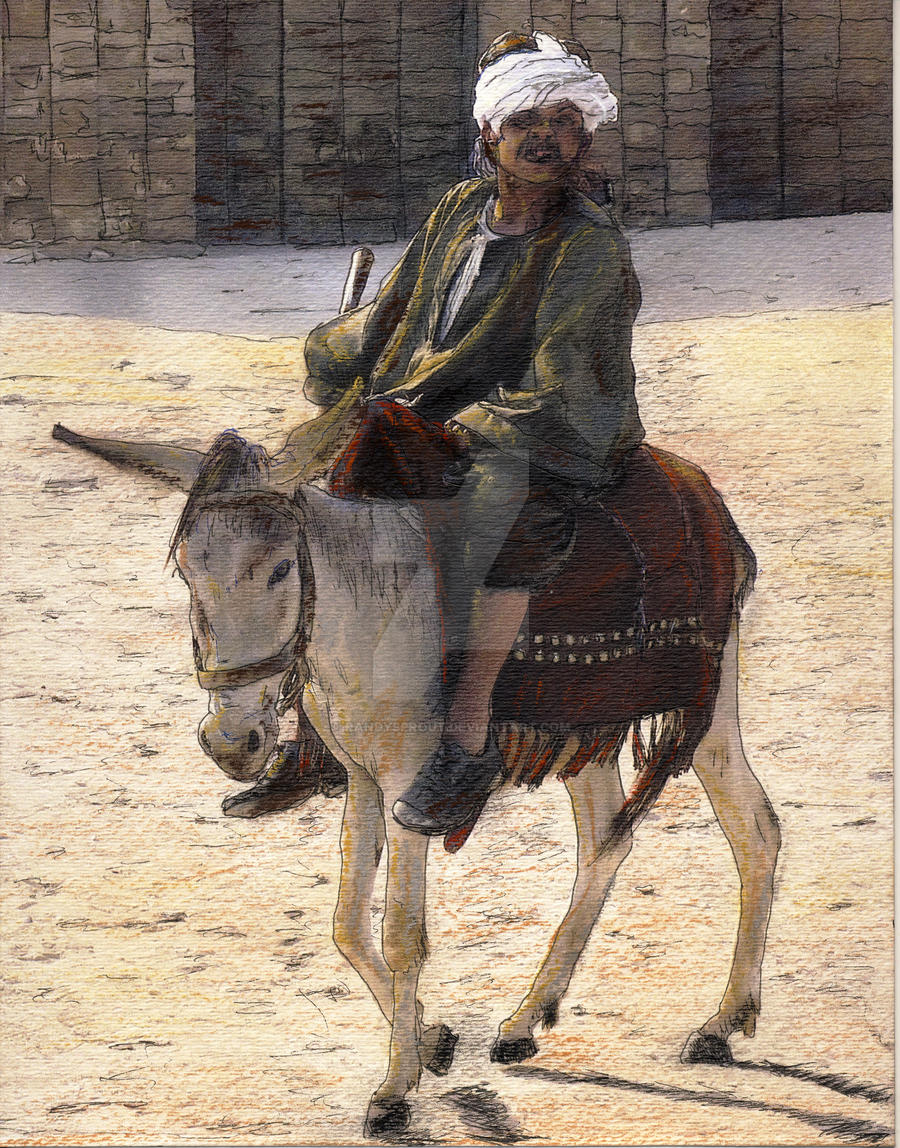 Donkey Rider in Cairo by RandySprout