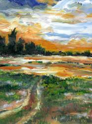 Ponderosa Marsh in Deep Winter by RandySprout
