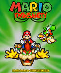 Mario Twinsanity Cover