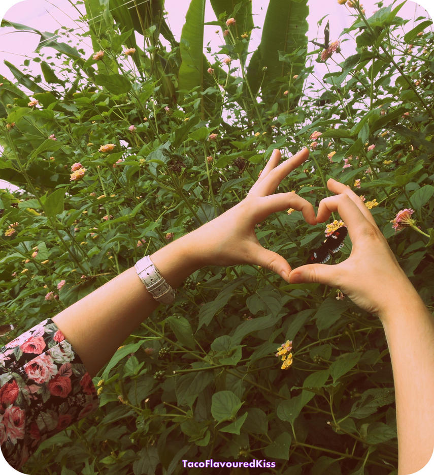 Love Heart by TacoFlavouredKiss
