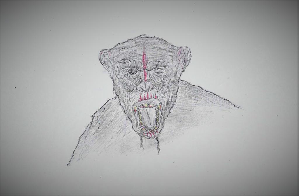 Ape by TheUnknownPlanet