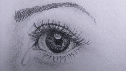 Another eye study