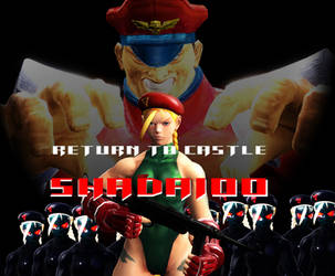 Return to castle shadaloo by lkhrizl