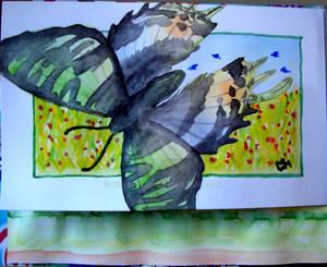 Urania sloanus