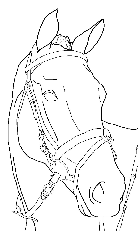 Horse Lineart : Horse lineart by loretota on deviantart