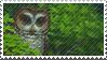Hoole Stamp by verybluebird