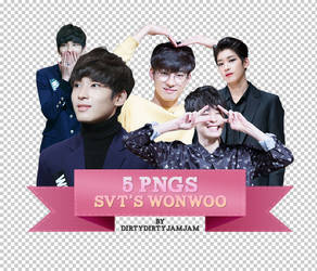 [01] 5 PNGS - SVT's WONWOO by dirtydirtyjamjam