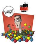 The Big Bang Theory 13
