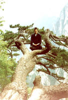 taoist meditating in tree by burning-effigy