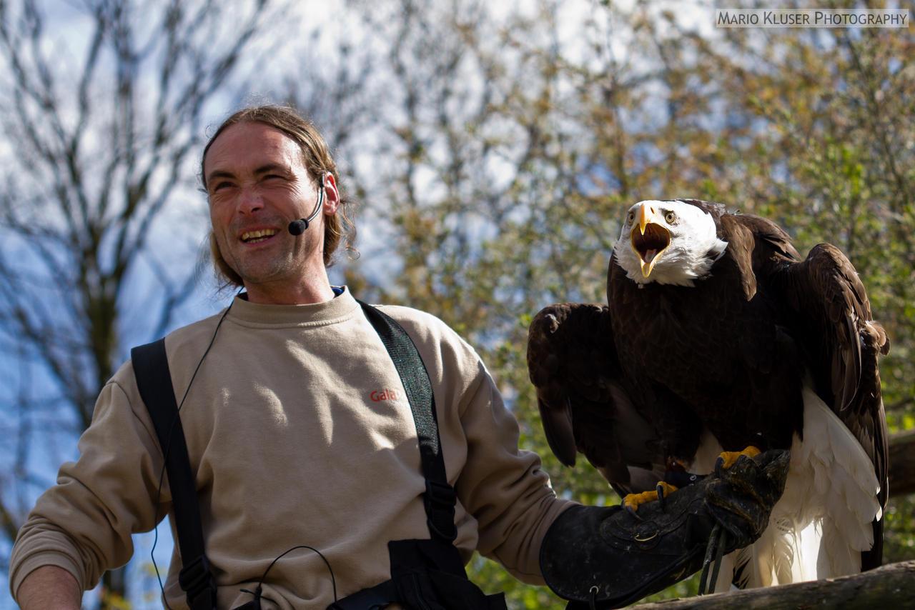 Fun With The Eagle
