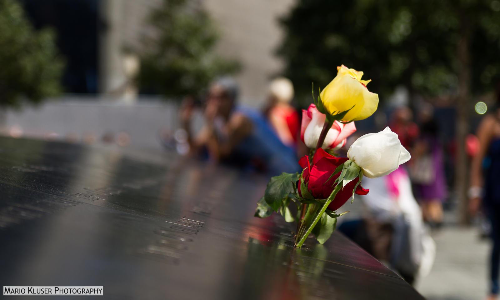 9/11 Memorial Pool - 3