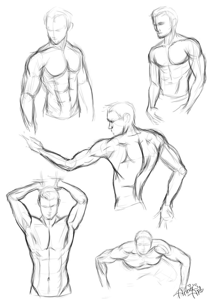Sketch male 39 s body by kennienoname on deviantart for How to draw a body tumblr