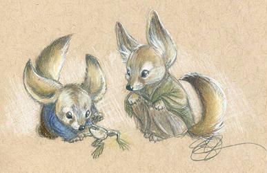 Fox Frogs