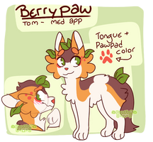 BerryPaw (Warriors oc) by PupsFluff