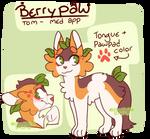 BerryPaw (Warriors oc)