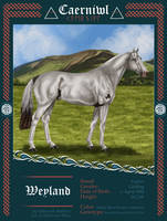 Weyland /\ 1892 Ydw. G. by oTapirus