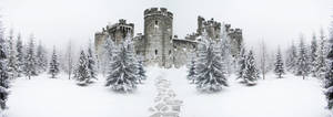 Premade Background Winter Landscape