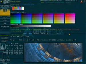 Solarized XMonad SSC15 Edition