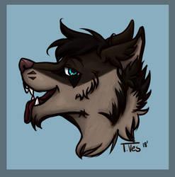 Headshot for Wolfy