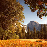 Autumn in Yosemite by ConH