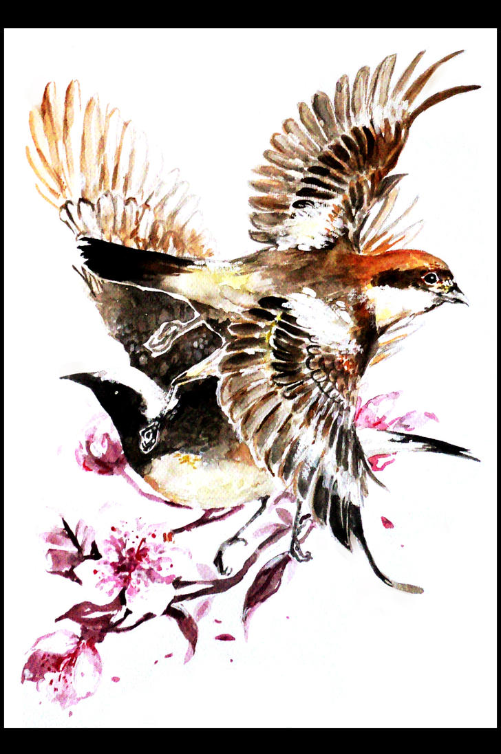 Study of Two Birds by TeaTori
