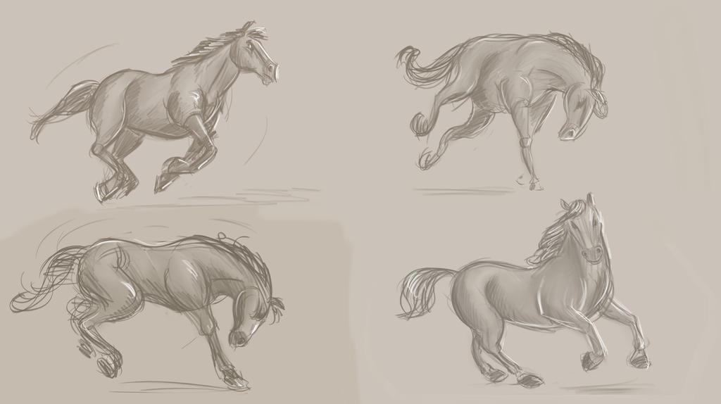 Horsestudies by wabea