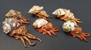Mini Hermit Squid Collection