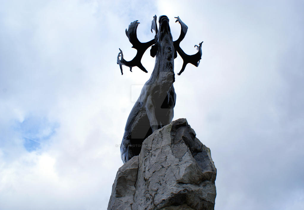 Beaumont-Hamel Newfoundland Memorial by Emz-Photography