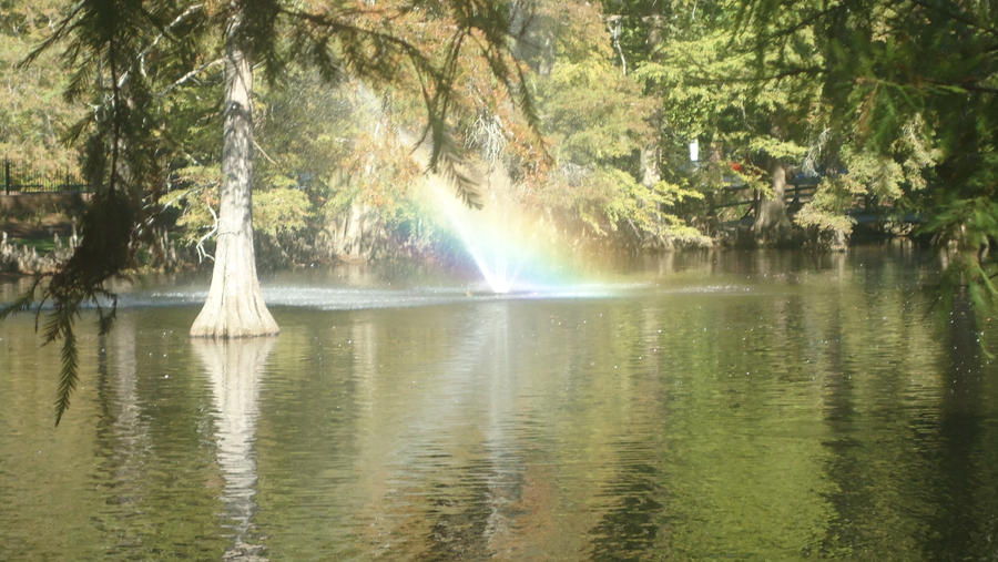 Swan Lake by takuya36diablo