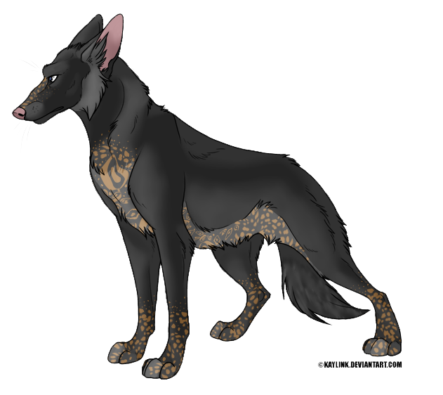 What Dog Is Colored Like A German Shepherd