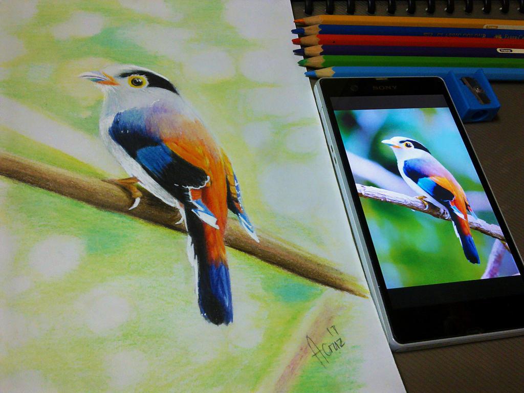 Birdy by AllanBrix
